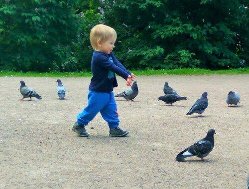 Боря и голуби 3.jpg