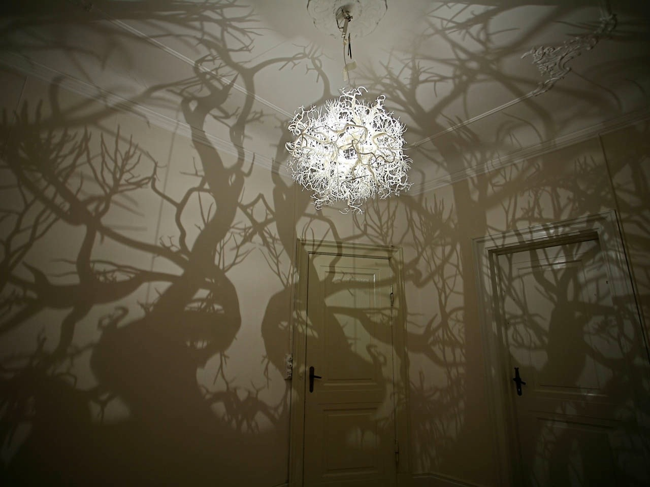 A Chandelier that Projects Tree Shadows (3 pics)