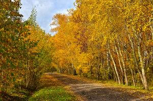 По пути с Золотой осенью...