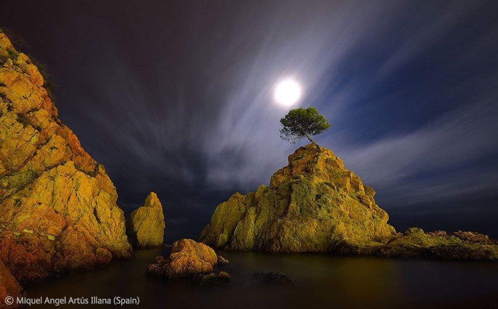2-е место. Леса Лапландии на рассвете . Снимок делан с гидросамолета. (Фото M