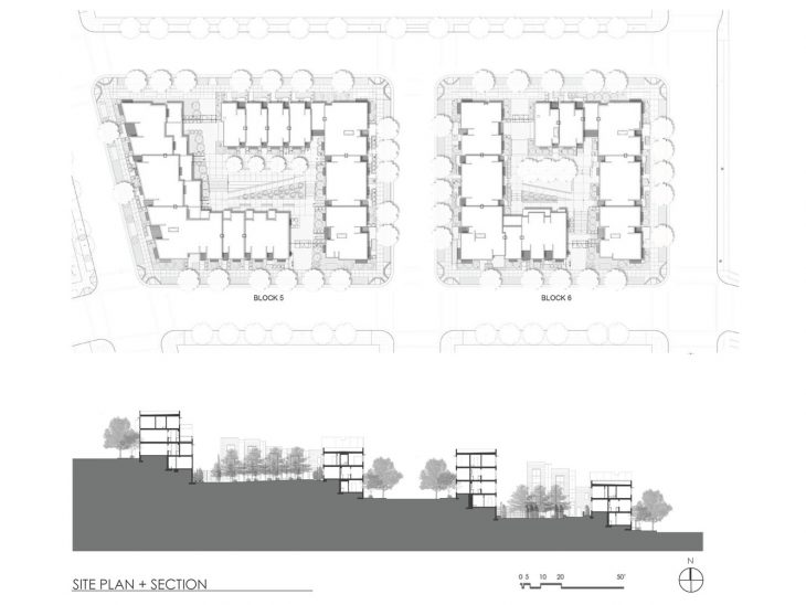 Hunters View Housing Blocks 5 & 6 by Paulett Taggart Architects