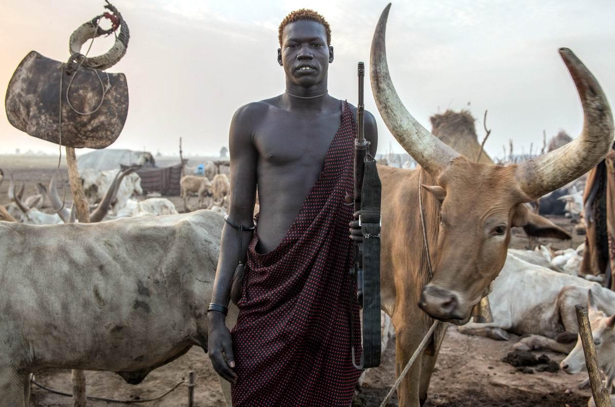 Ты лучше к нам не подходи: Суровый африканский ковбой и его рогатые питомцы