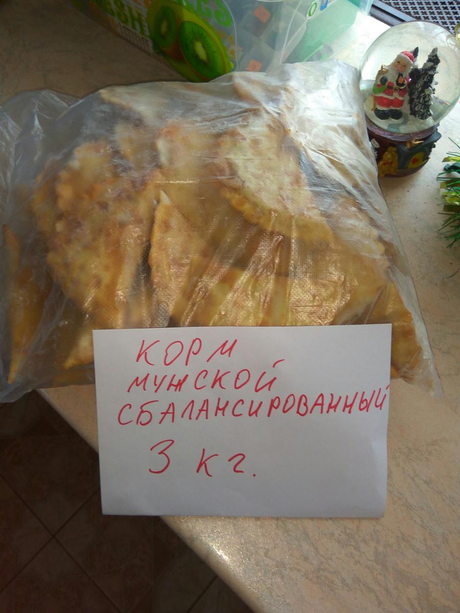 Подборка интересных и веселых картинок 13.01.18