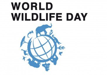 Открытки Всемирный день дикой природы. Поздравляем