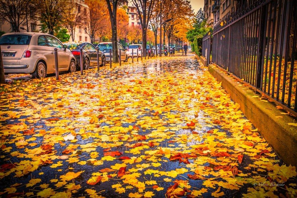 rainy-autumn-day-in-paris-by-valerii-tkachenko.jpg