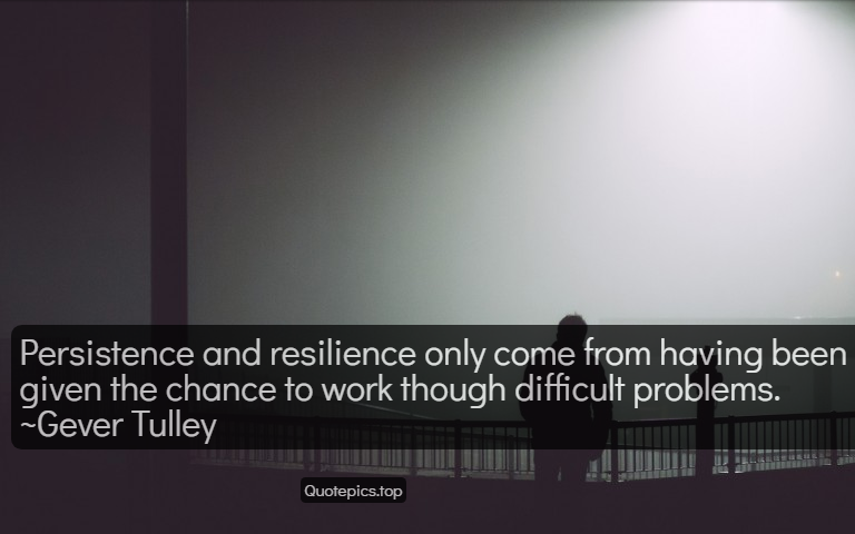 Persistence and resilience only come from having been given the chance to work though difficult problems. ~Gever Tulley