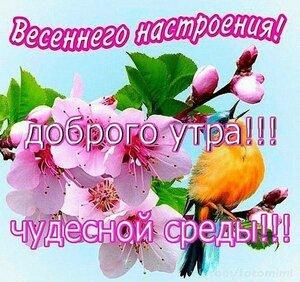 https://img-fotki.yandex.ru/get/769623/131884990.103/0_16c7ee_aaaf492f_M.jpg