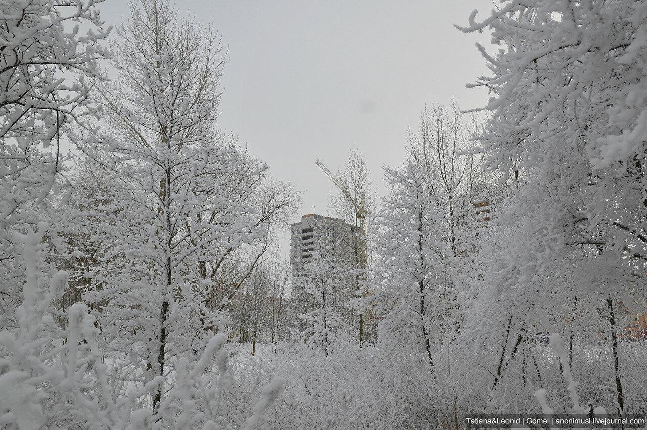 Зима в Волотове