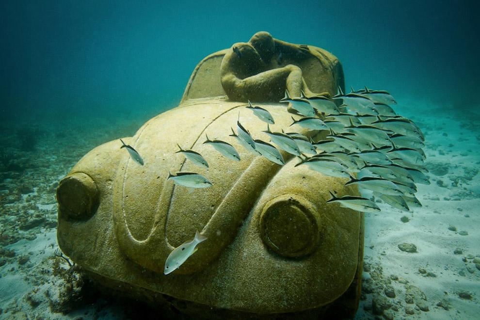 Это был репортаж из подводных миров. Также смотрите статьи « Искусственные рифы » и « Самые в