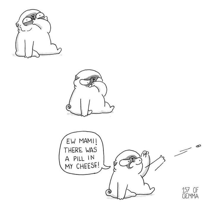 30 комиксов, которые показывают, что жить с собакой это здорово