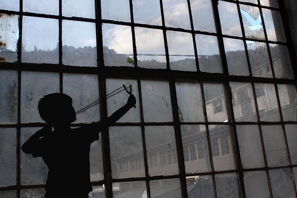 Художник, который превратил треснувшие стекла в стаю птиц