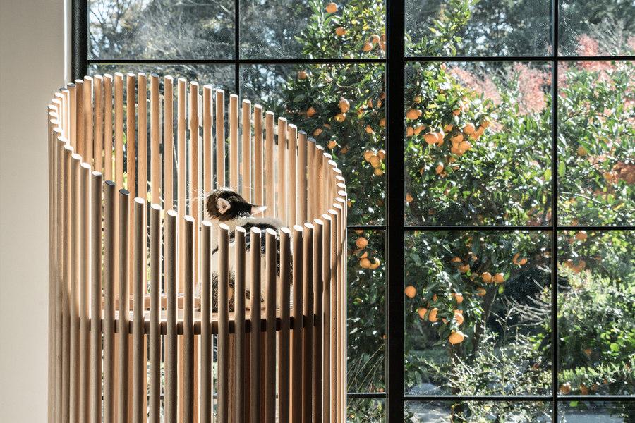 По словам представителей компании Rinn, подобное соединение мрамора и натуральной древесины выражает