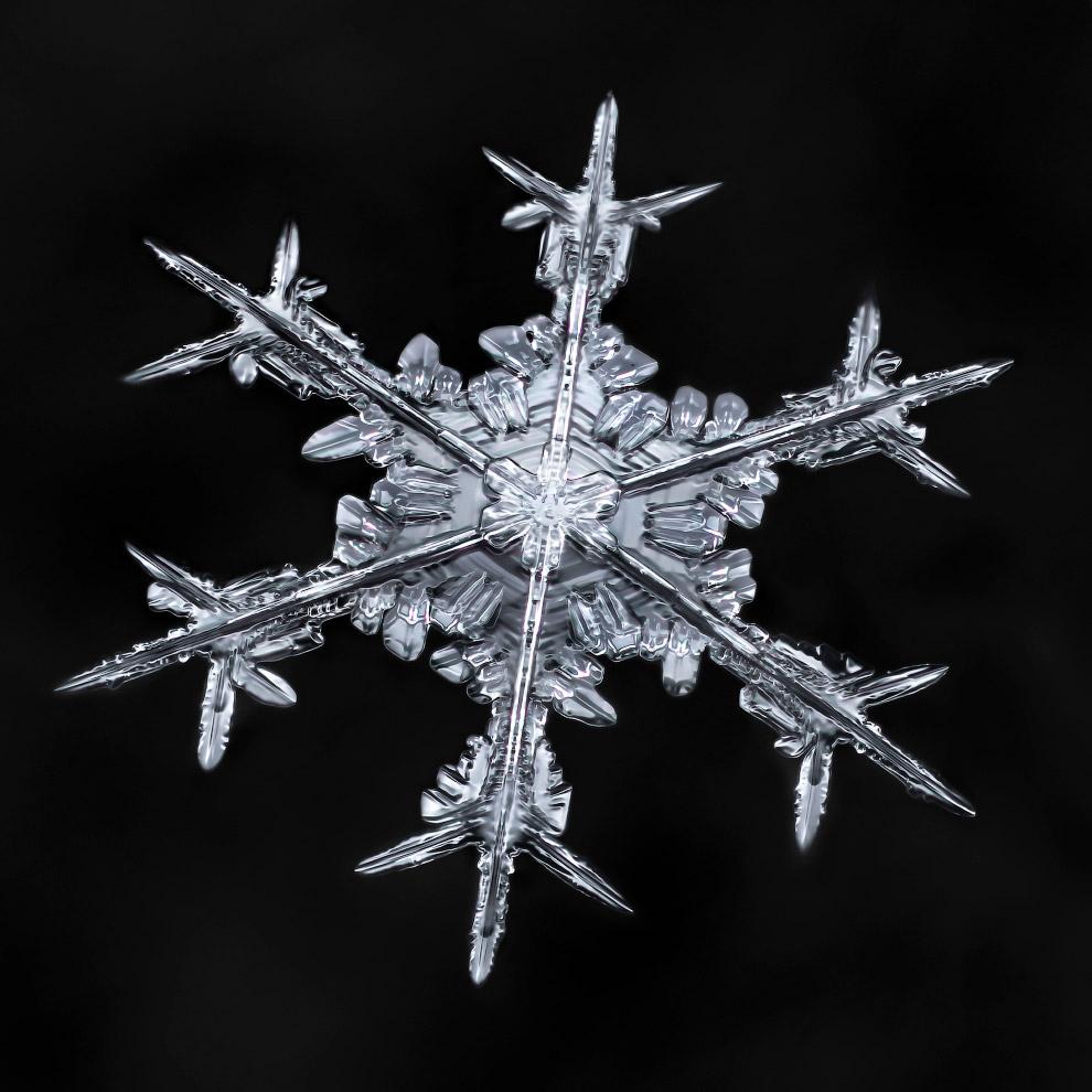 8. Сложные звёздчатые снежинки обладают уникальной, отличимой на глаз геометрической формой. И вариа