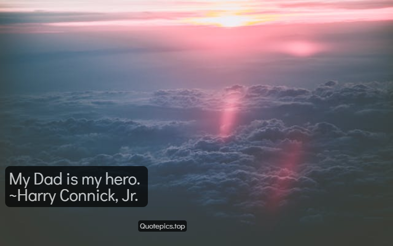 My Dad is my hero. ~Harry Connick, Jr.