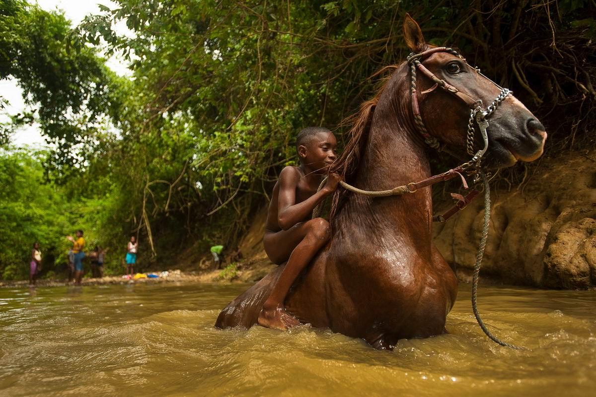 Колумбийский боливар родом из детства: Купание рыжего коня