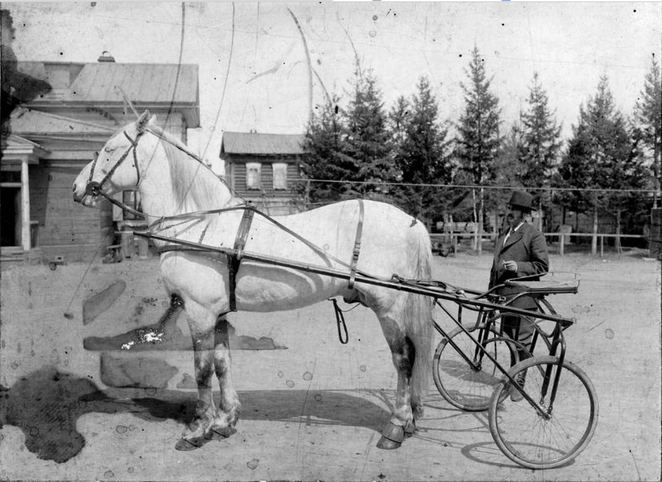 Иркутский купец Иван Николаевич Алексеев во дворе собственной усадьбы. Алексеев рядом с коляской для скачек. 1910