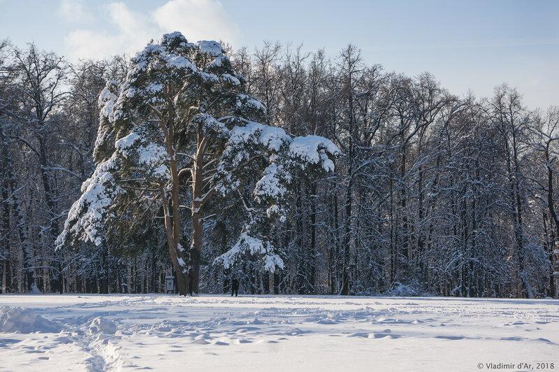 Царицыно. Зима и Солнце.