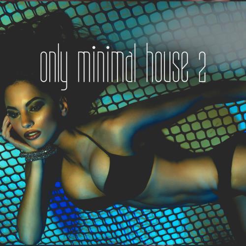 VA - Only Minimal House, Vol. 2 (2018)