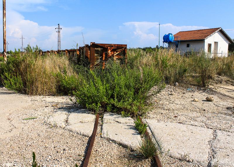 У заброшенных складов и железнодорожных путей начинается эко-тропа