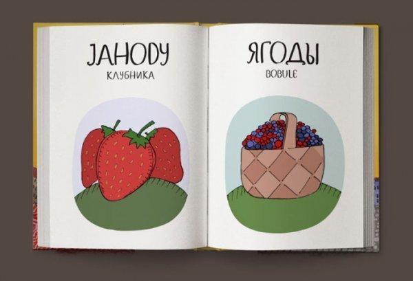 0 180001 82609e19 orig - Переводчик с чешского на русский в картинках
