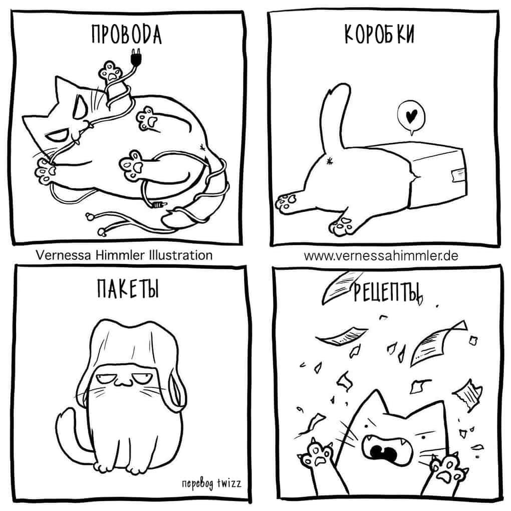 20 честных комиксов о том, как живётся человеку, у которого есть кот