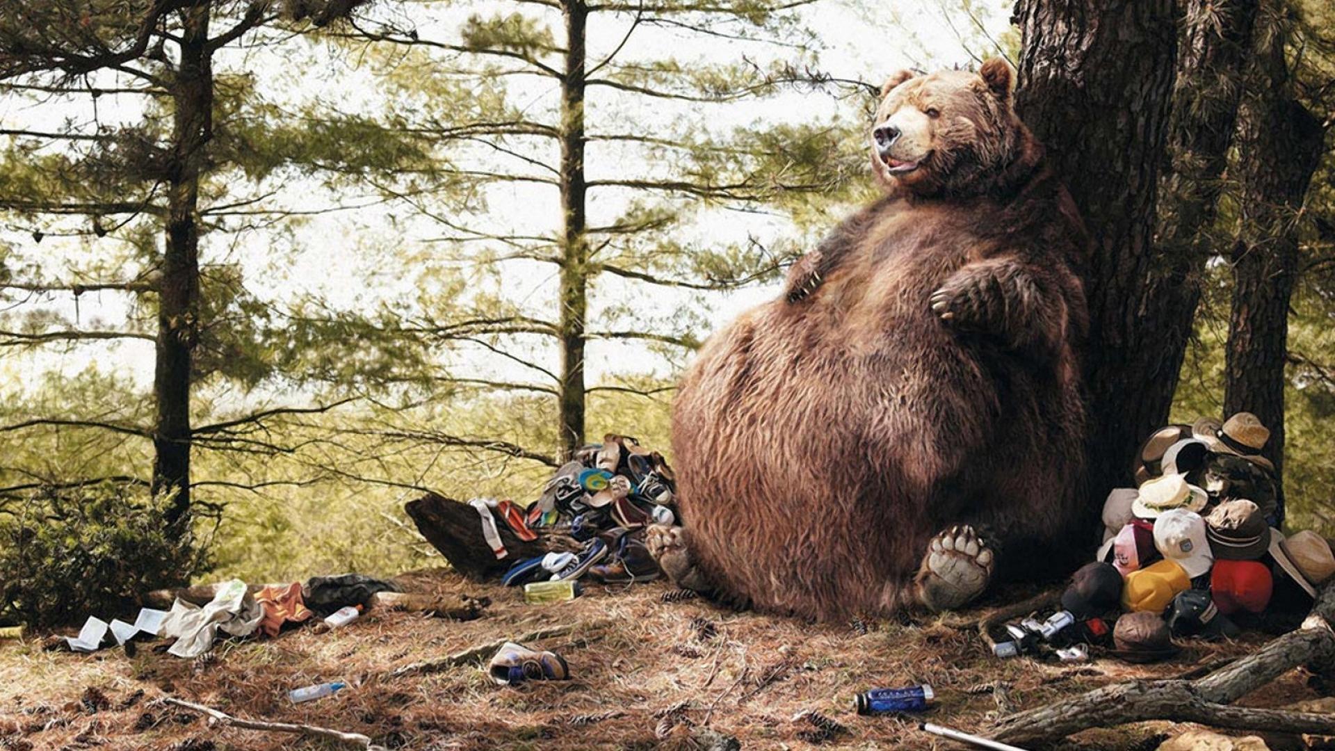 Что делать при встрече с медведем (1 фото)
