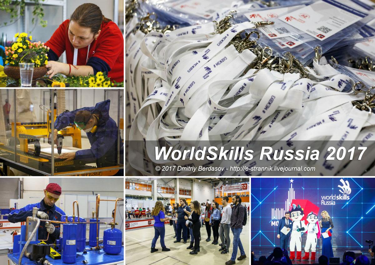 WorldSkills Russia 2017