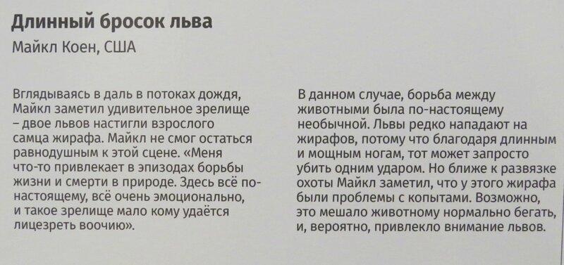 https://img-fotki.yandex.ru/get/770612/140132613.6d2/0_244693_f645d93_XL.jpg
