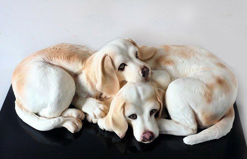 0 17f7fc 7e5fd5c6 XL - Торты в виде домашних животных