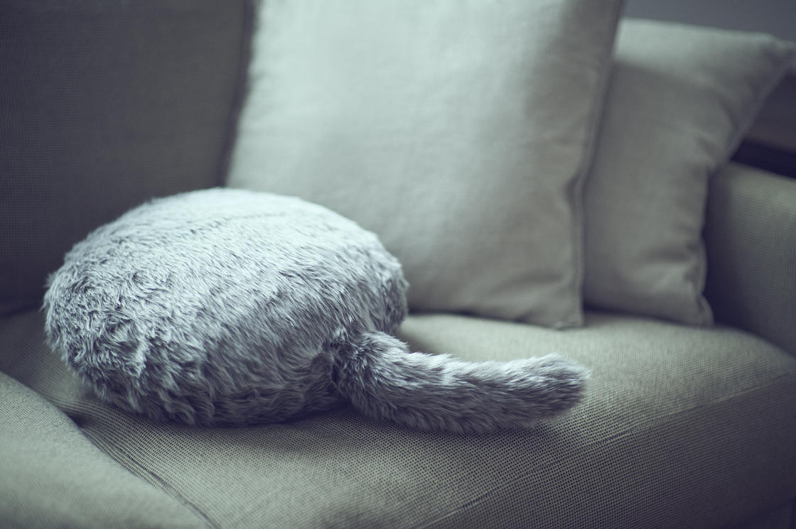 Qoobo – This robot cushion wags its tail like a cat!