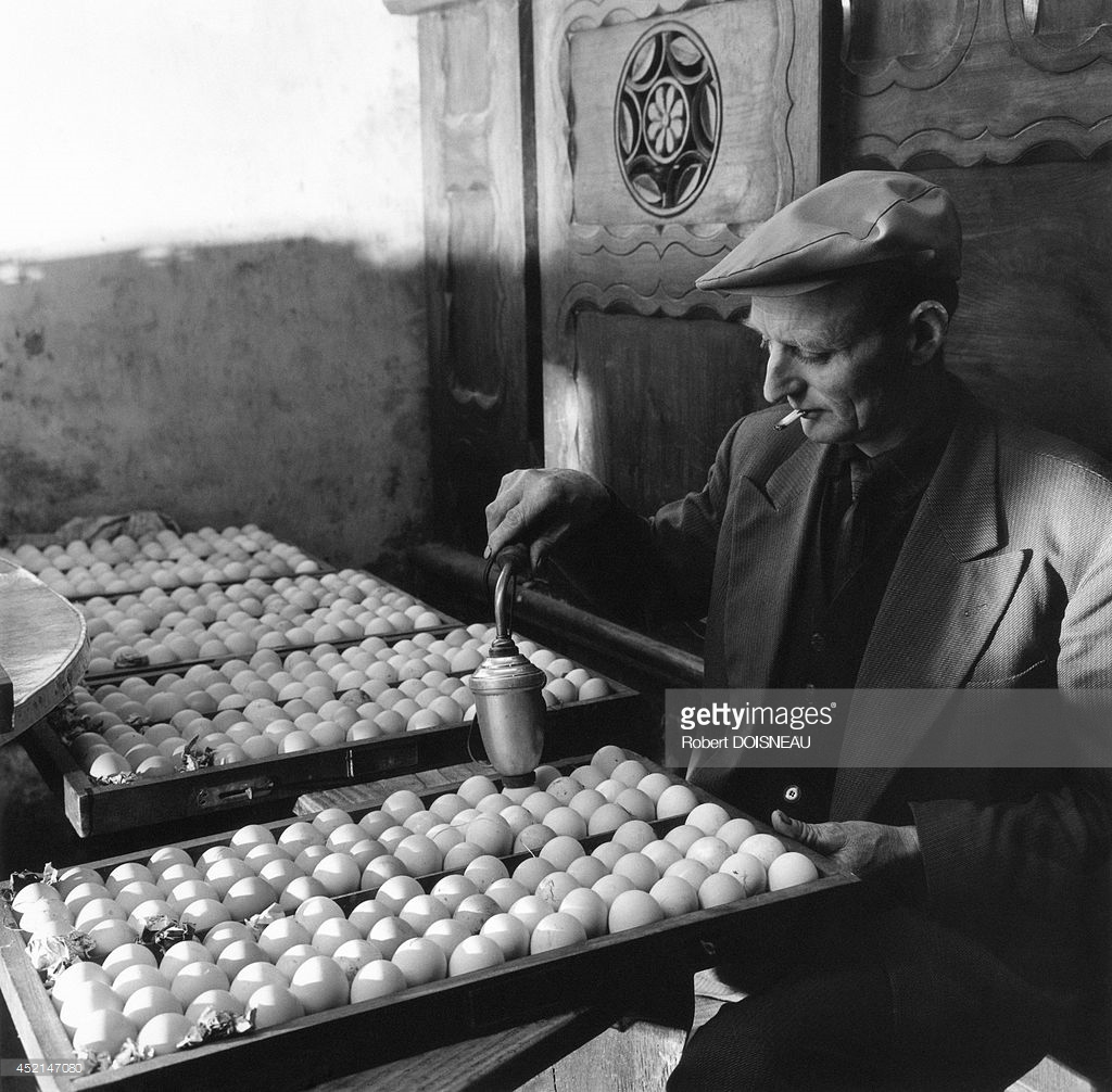 1964. Пьер Лашнер разводит цыплят в Гринце