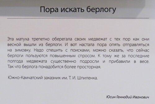 https://img-fotki.yandex.ru/get/772910/140132613.6c5/0_2440c3_8d404d0e_L.jpg