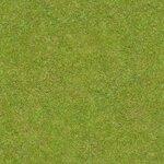 grass_grass_0118_02_preview.jpg