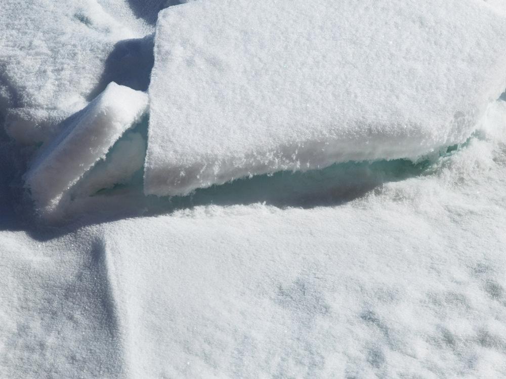 Мы её теряем. Арктика в фотографиях Дайан Тафт (18 фото)