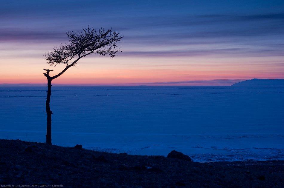 Говорят, когда утренняя заря красная или багрово-красная, а солнце показывается из-за туч или рваных