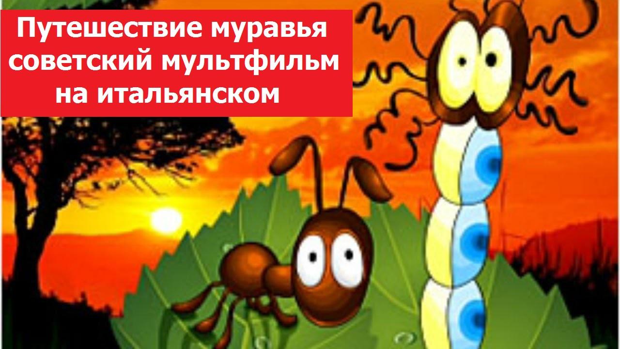 Путешествие муравья, Le avventure di una formichina - советский мультфильм на итальянском языке