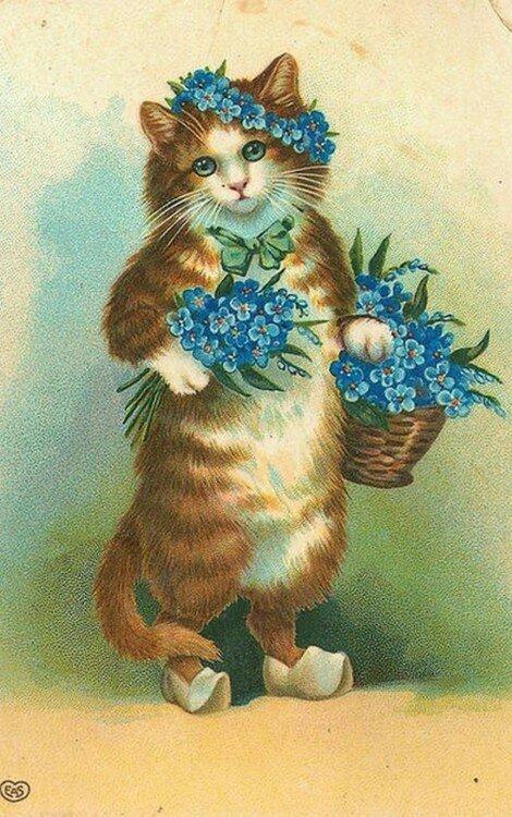 Старинные открытки котов, инструментом для