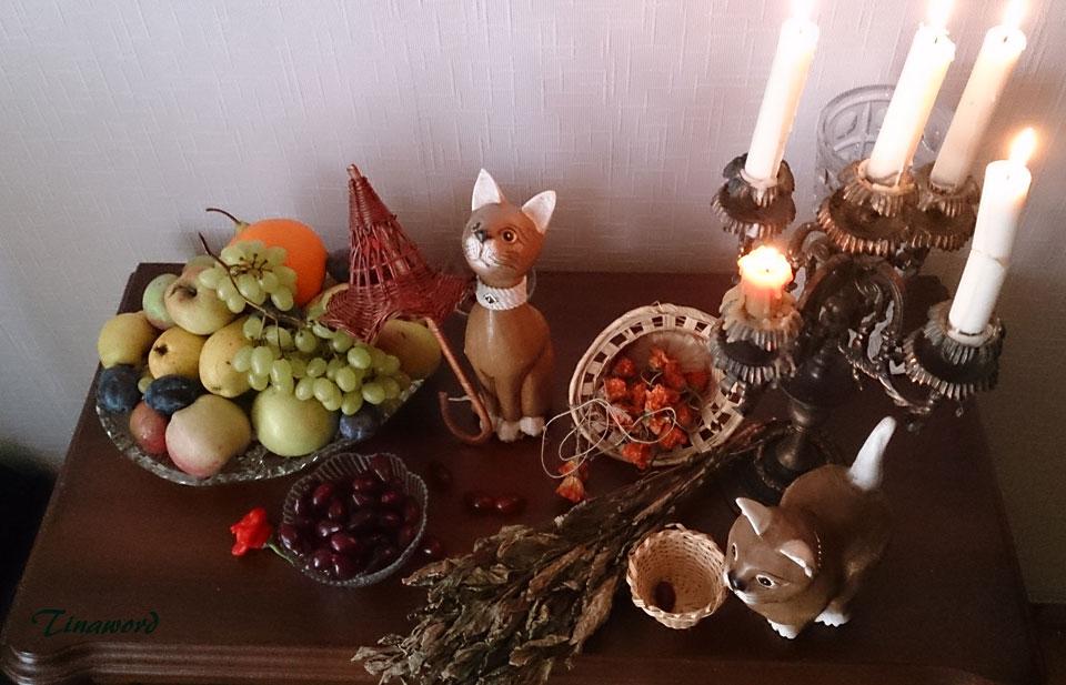 фрукты-и-коты-3.jpg