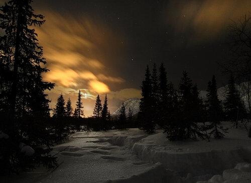 Морозной лунной ночью...