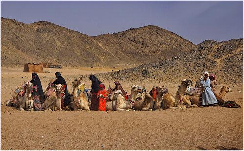 Записки интернет-обывателя: Бедуины. Жизнь без гаджетов