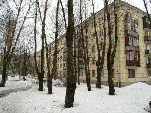 ул. Ленсовета 61