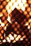 002. Рождество под Вентспилсом, 24-26 декабря 2012 года #3.jpg