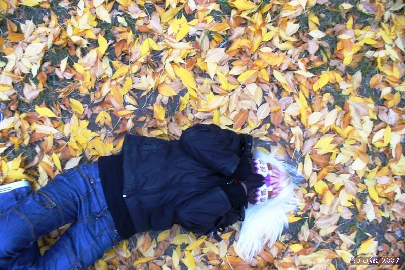сумасшедшая осень