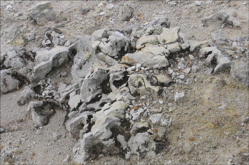 Лавы в кальдере Узон, Камчатка
