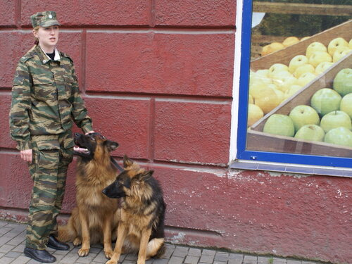 Nice girl with two dogs (не то, что некоторые подумали!!! :)