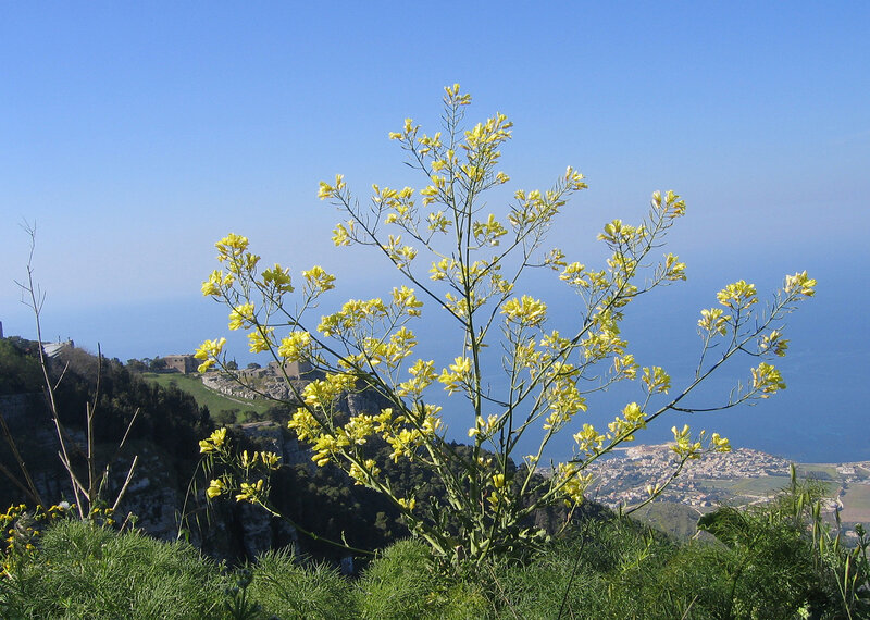 Над Сицилией