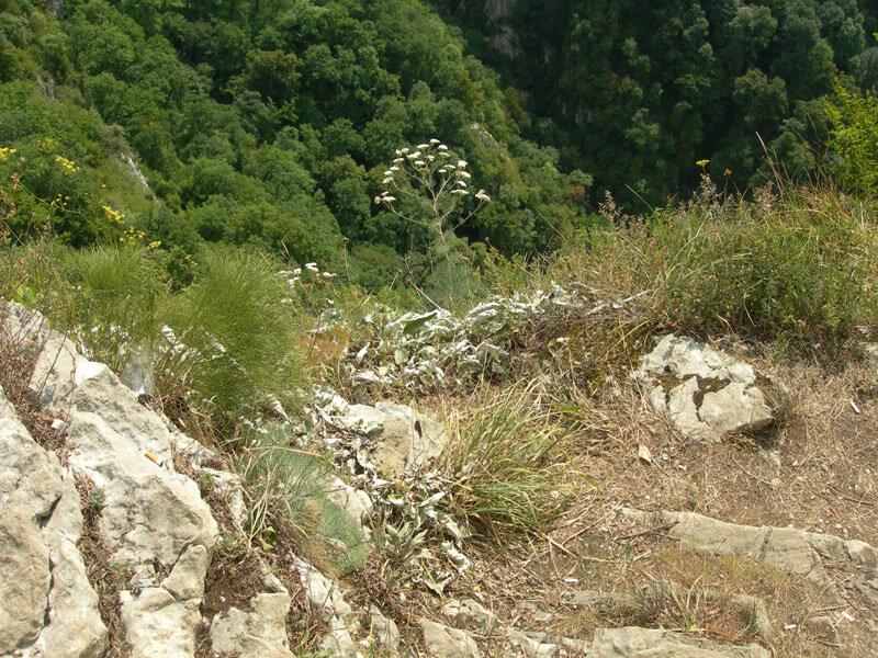 Бездна, photo foto fotki history россия адлер сочи кавказ кавказские горы  орлиные скалы прометей титан миф фортуна древнегреческий бог пейзаж фото фотки апарышев