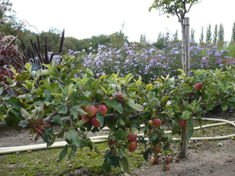 Сад-огород Дианы де Пуатье