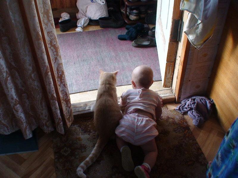 Нравится Позитивная подборка детей и животных? Опубликовано. Фото