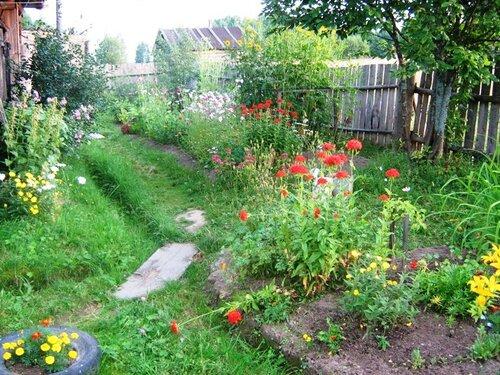 Вредители и болезни сада и огорода